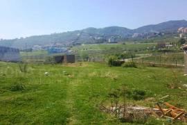 Toke shitje pas Liqenit Artificial ne Tirane, Agrare