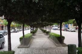 Ambjent zyre me qera ne Blv Zogu I, Qera, Tirana