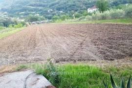 Toke ne rruge kryesore ne Mullet, Shitje, Tirana