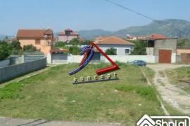 TRUALL IDEAL PER NDERTIM, Elbasan