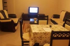 Apartament 1+1, Tirana, Qera