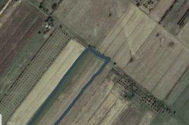 SHITET 8778 m² TOKË ARE NË SARAVË ,LUSHNJE, Agrare