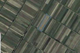 SHITET 2500 M² TOKË ARE NË KRUTJE E SIPËRME,LUSHNJ, Agrare