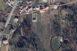 Shitet toke+bunkier 2545 m2, Gjiri i Lalzit!, Agrare